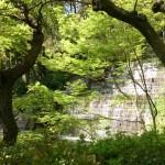 Waterfall - Yashima